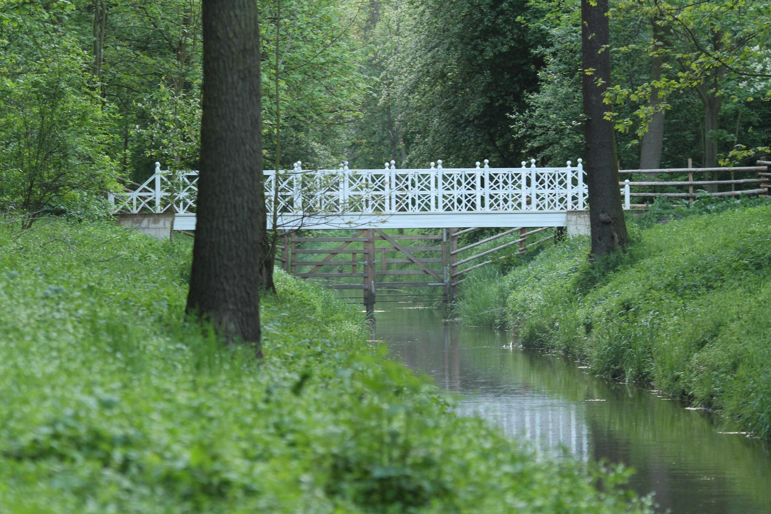 Řešení mostů v zámeckém parku, Veltrusy